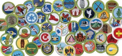 Public Merit Badge Sheets - Boy Scout Troop 2020 (Haslet, Texas)